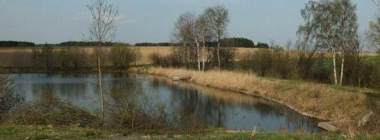 Rybník Dolní Vetla