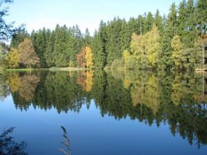 Rybník Ochoz