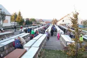 Výstava Vysočiny 2015 Bohdalov