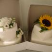 svatebni dort narozeninový detsky dort cukrovi jaroslava breckova polnicka zdar nad sazavou vysocina01