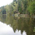 Kněžský rybník