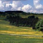 Čistá Vysočina 2015, sběr odpadu, úklid