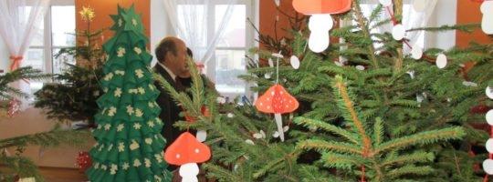 Ve Vatíně se soutěží o nejkrásnější vánoční stromeček