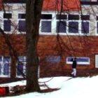 Prořezávka stromů v Nemocnici Nové Město na Moravě