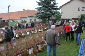 Výstava Vysočiny 2014 Bohdalov