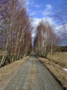 cesta-z-vortove-do-zalibeneho
