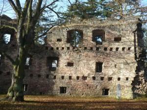 hrad-v-dalecine1