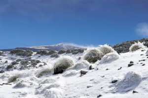 leos-simanek-novy-zeland-4