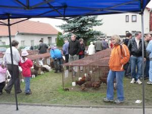 vystava-vysociny-bohdalov-3